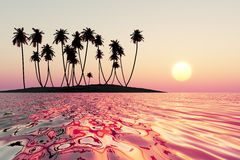 Pink tropical sunset Royalty Free Stock Photo