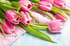 Pink tulip bouquet on blue wooden background, copy space. Beautiful flowers Stock Photos