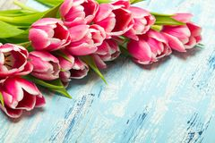 Pink tulip bouquet on blue wooden background. Copy space. Beautiful flowers Royalty Free Stock Image