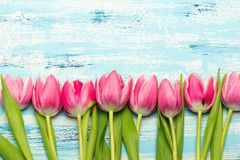 Pink tulip bouquet on blue wooden background, copy space. Beautiful flowers Stock Images