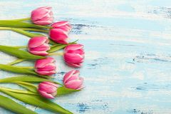 Pink tulip bouquet on blue wooden background, copy space. Beautiful flowers Royalty Free Stock Photography