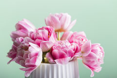 Pink tulip bouquet on a green background Stock Images