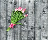 Pink tulip flowers Bouquet spring blooms ribbon bow decoration Royalty Free Stock Images