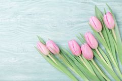 Pink tulip flowers on rustic table for March 8, International Womans or Mothers day. Beautiful spring card. Top view. Pink tulip flowers on table for March 8 Stock Image