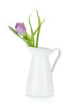 Pink tulip in metal pitcher Stock Photos
