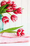 Pink tulip on towel Royalty Free Stock Image
