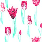 Pink tulip variety with leaves. Pink tulip variety, seamless pattern on white background, hand painted watercolor illustration Royalty Free Stock Photo