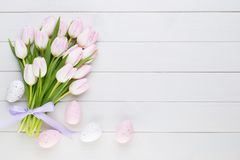 Pink tulip on the white background. Easter background. Pink tulip on the white background. Easter background Stock Photography