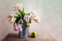 Pink Tulips. Still-Life with blue Pink Tulips in tin can Royalty Free Stock Images