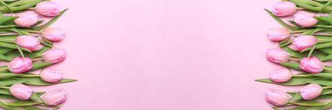 Pink tulips on the pink background. Flat lay, top view.  Valenti Royalty Free Stock Photo