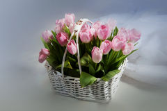 Pink tulips in the basket with wedding rings Stock Photo
