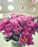 Pink tulips. Beautiful pink flower bouquet royalty free stock photography