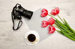 Pink tulips on a blank sheet of paper, mug of coffee and a camera, a light wooden background. top view Stock Photography
