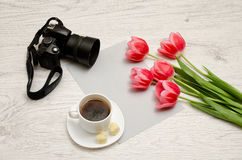 Pink tulips on a blank sheet of paper, mug of tea and a camera, a light wooden background. Royalty Free Stock Photo