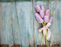 Pink tulips on the blue wooden background Royalty Free Stock Photography