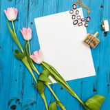 Pink tulips on a blue wooden board royalty free stock image
