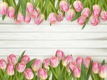 Pink tulips border. EPS 10 Royalty Free Stock Photo