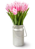 Pink tulips bouquet Stock Images