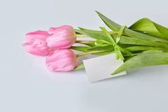 Pink tulips bouquet with blank tag on a table in vase royalty free stock photo