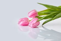 Pink tulips bouquet on a table stock images