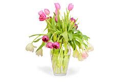Pink tulips bouquet in vase Stock Photography