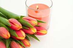 Pink Tulips. Bunch of fresh pink tulips with a pink candle isolated on white background Royalty Free Stock Photography