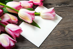 Pink tulips and card Stock Images