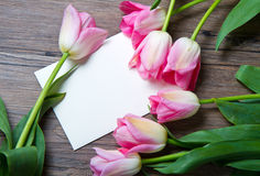Pink tulips and card Stock Photo