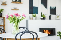 Pink tulips on dining table in white room interior with plants a stock photography