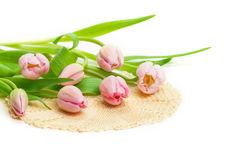 Pink tulips, doily Royalty Free Stock Photos