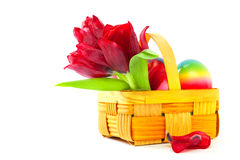 Tulips and Easter eggs. Royalty Free Stock Photo