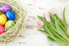 Pink tulips and Easter eggs in a nest Royalty Free Stock Image