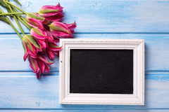 Pink  tulips and  empty blackboard for text  on blue  painted wo Royalty Free Stock Photos