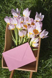 Pink tulips with envelope Royalty Free Stock Images