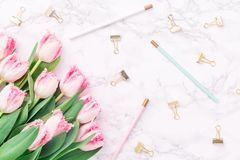 Pink tulips with festive stationary on white marble background. Feminine job, gender equality, home office and career concept. Copy space Top view. Horizontal Stock Photos