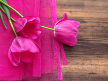 Pink tulips, floral arrangement on wooden background with pink mesh and space for message. Background for Mother`s Day. 8 March and other greeting cards or stock image