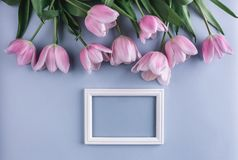 Pink tulips flowers on blue background with frame for text. Greeting card or wedding invitation. Flat lay, top view, copy space stock images