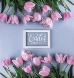 Pink tulips flowers on blue background with frame for text. Waiting for spring. Happy Easter card. Flat lay, top view.  royalty free stock image