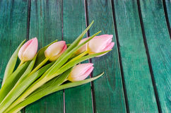 Pink tulips flowers, genus Tulipa, family Liliaceae with heart shape gift box on green bokeh background, close up Royalty Free Stock Images