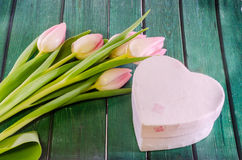 Pink tulips flowers and heart shape gift box, genus Tulipa, family Liliaceae on green bokeh background, close up Royalty Free Stock Photo