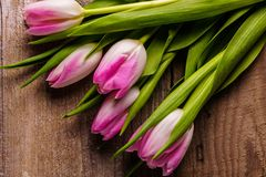 Pink tulips flowers on old wooden background. Bouquet of; pink tulips flowers on old wooden background; flat lay; copy space Royalty Free Stock Images
