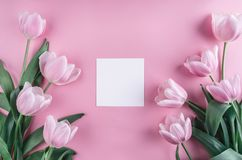 Pink tulips flowers and sheet of paper over light pink background. Saint Valentines Day frame or background. royalty free stock photos