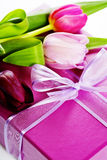 Pink tulips and gift box Stock Images