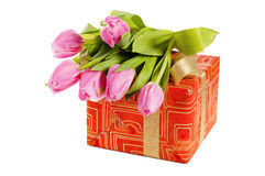 Pink tulips and gift box Stock Photo