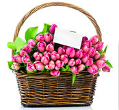 Pink tulips and a greeting card in the wicker Royalty Free Stock Photography