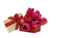 Pink tulips and heart box shape Royalty Free Stock Photo