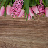 Pink tulips and hyacinth flowers Stock Photos