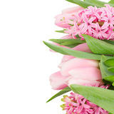 Pink tulips and hyacinth flowers close up Royalty Free Stock Photography