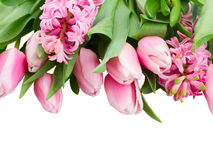 Pink tulips and hyacinth flowers close up Stock Photos