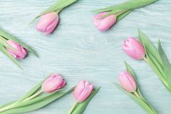 Pink tulips for March 8, International Womans or Mothers day. Beautiful spring background. Top view. stock photo